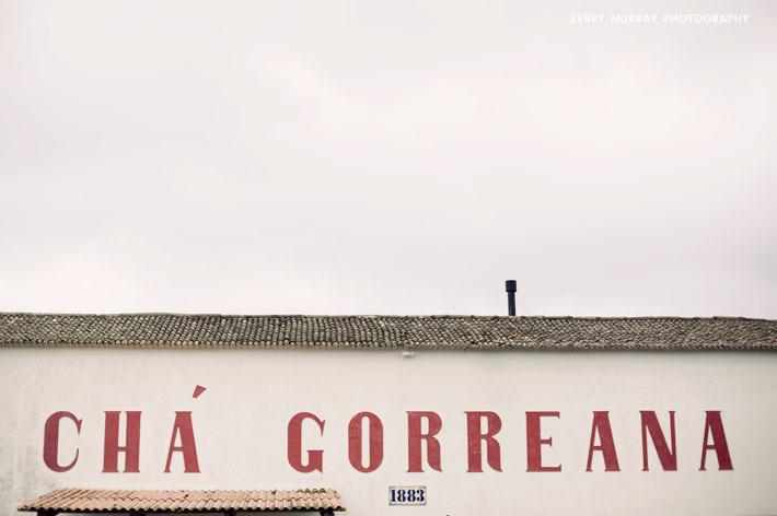 Gorreana Tea, São Miguel, Azores.