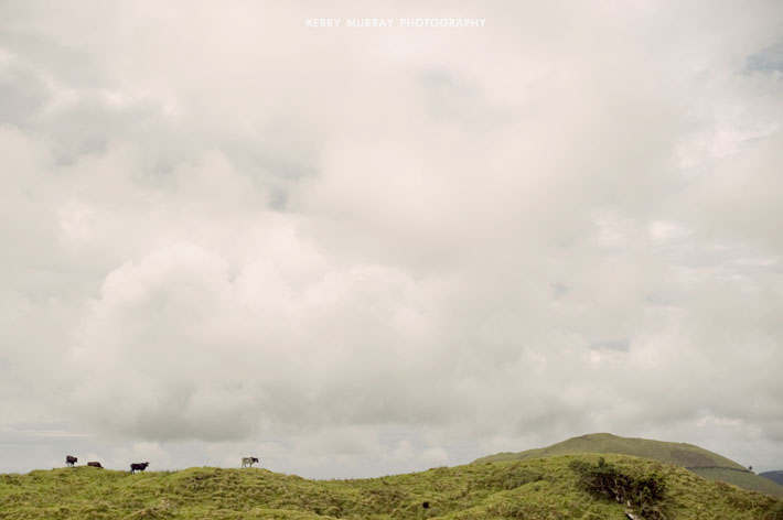 Terceira Island, Azores - travel photography Portugal