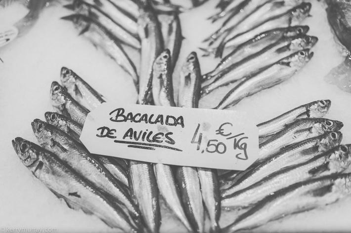 Oviedo Asturias Spain-14
