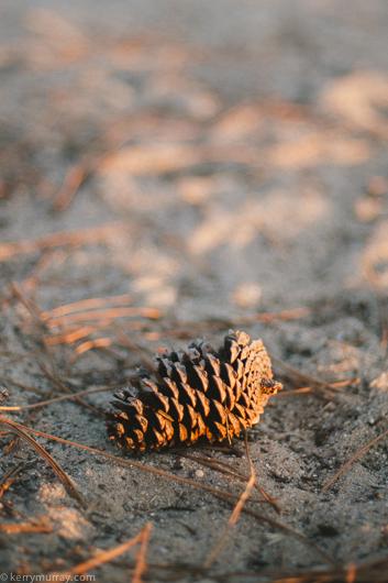 Praia da Gale Camping-2