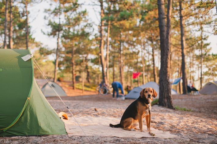 Praia da Gale Camping-25