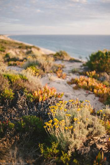Praia da Gale Camping-9