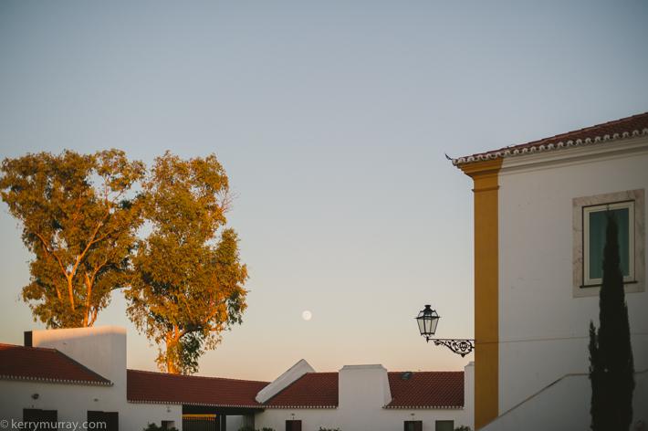Torre de Palma Monforte