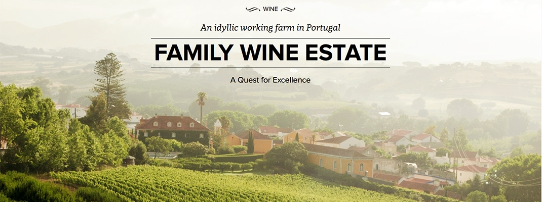 wine farm photography portugal